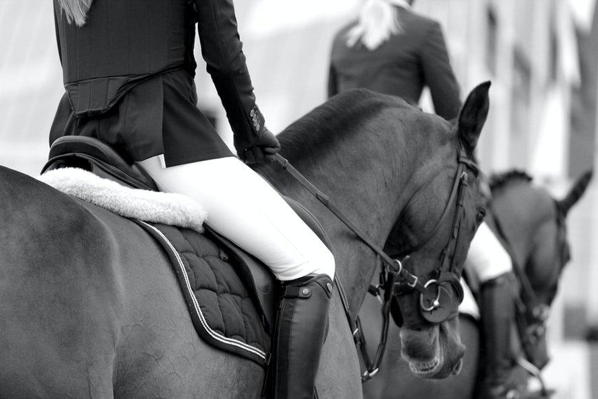 pantalon equitation femme